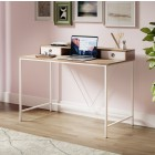 Dudley Metal Desk with 2 Drawers